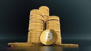 plătiți în bitcoin)